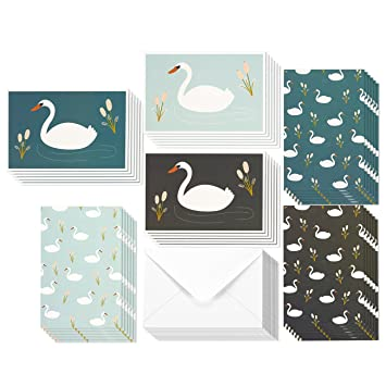 Amazon 36 pack all occasion assorted blank note cards greeting 36 pack all occasion assorted blank note cards greeting card bulk box set white swan m4hsunfo Gallery