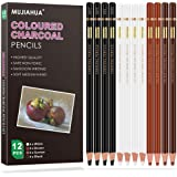 MUJINHUA Professional Charcoal Pencils Drawing Set, Colour Pencils Sketch Highlight White Pencils for Drawing, Sketching, Sha