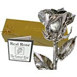 Platinum Dipped Real Rose w/ Gold Gift Box by The Original Forever Rose USA Brand!
