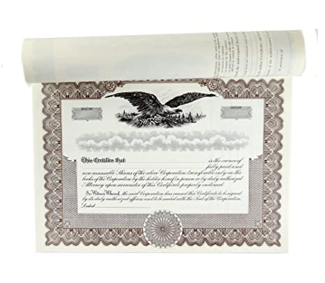 Amazon.com : Blank Stock Certificates with Stubs for Corporations ...