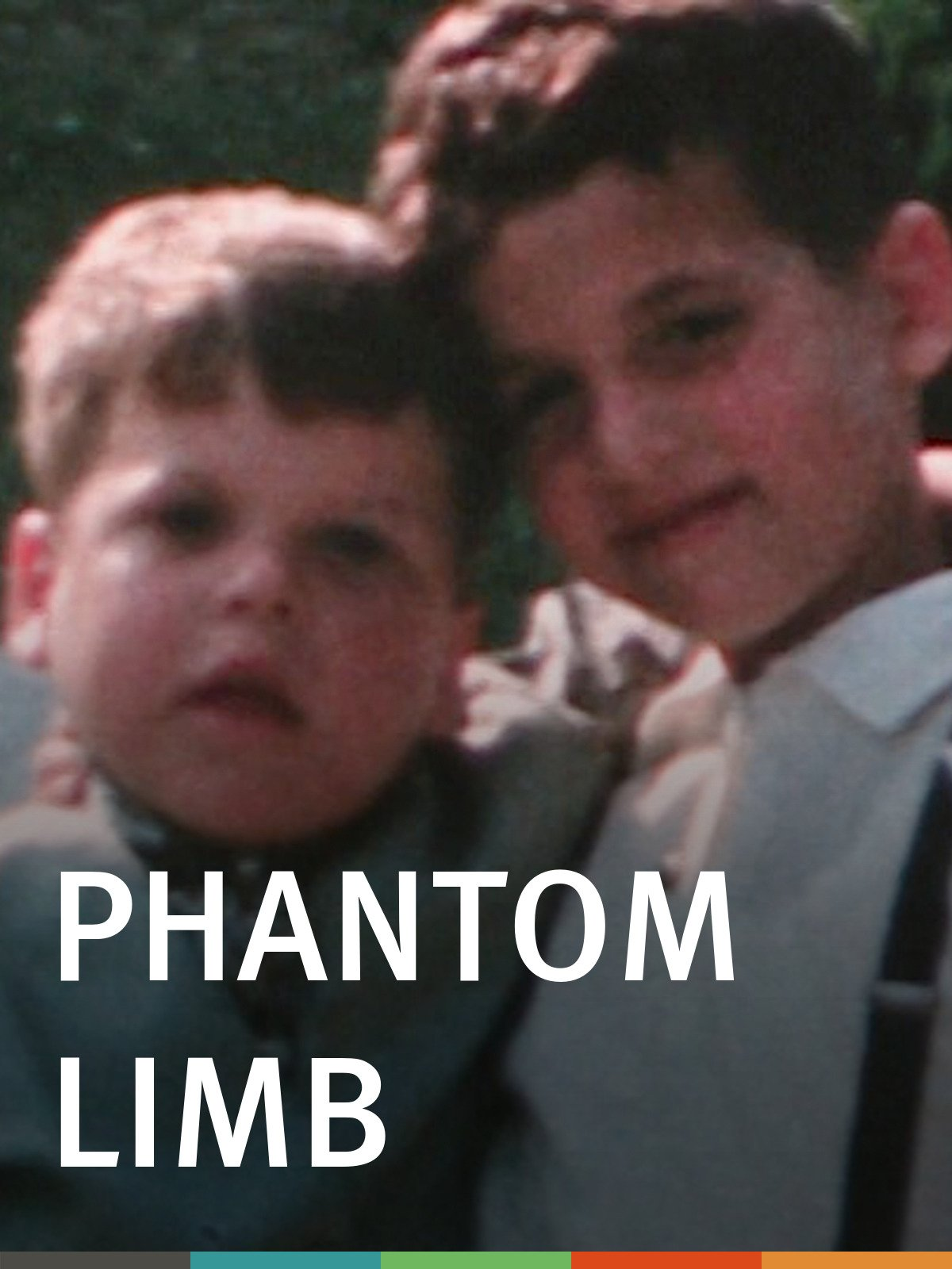 Phantom Limb (Institutional Use)
