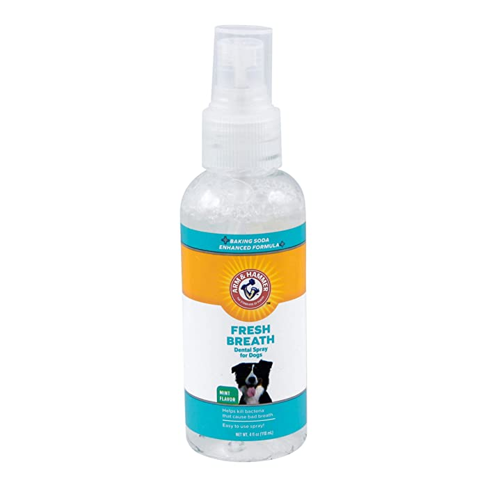 The Best Arm And Hammer Giant Size Pack Spray