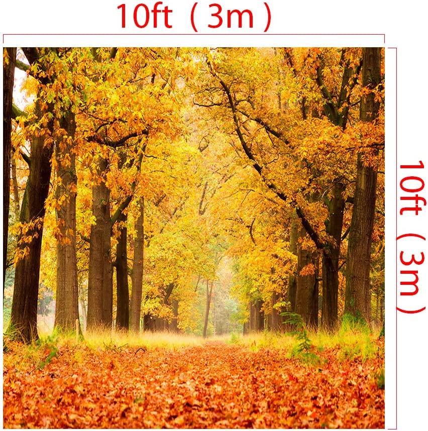 RBQOKJ 10x10ft Autumn Leaves Backdrop Golden Yellow Forest Photography Background Fall Holiday Party Photo Backdrops Studio Prop