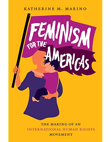 Feminism for the Americas: The Making of an International Human Rights Movement (Gender and