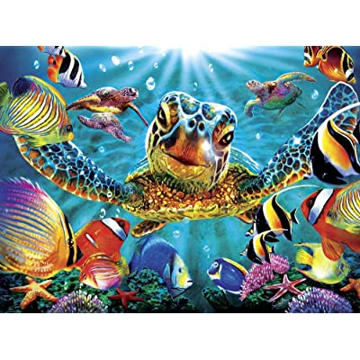 1000 Piece Puzzles for Adults Marine Color Tiny Bubbles: Toys & Games