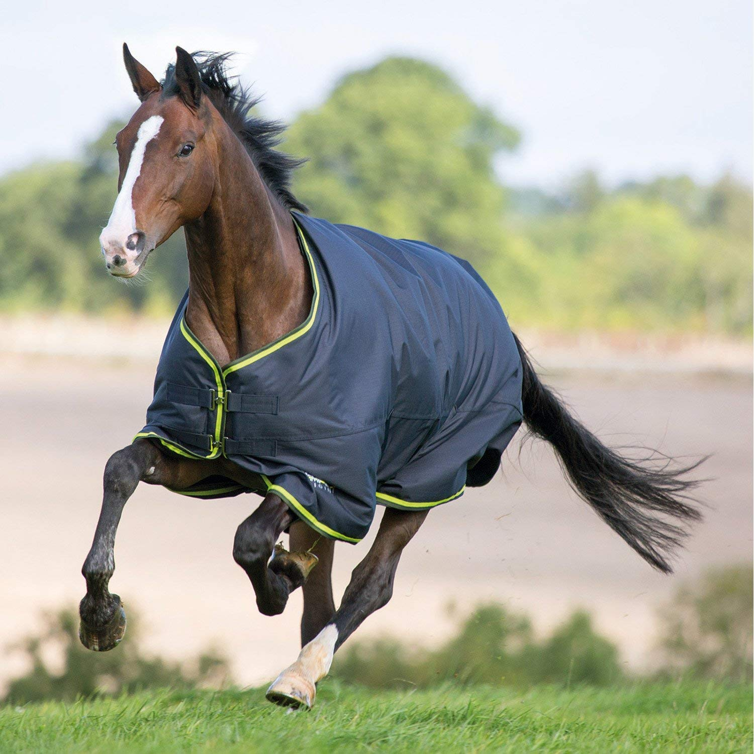 Charcoal Lime 6'9\ Charcoal Lime 6'9\ Shires Tempest Original 200 Turnout Rug-Charcoal Lime 6'9