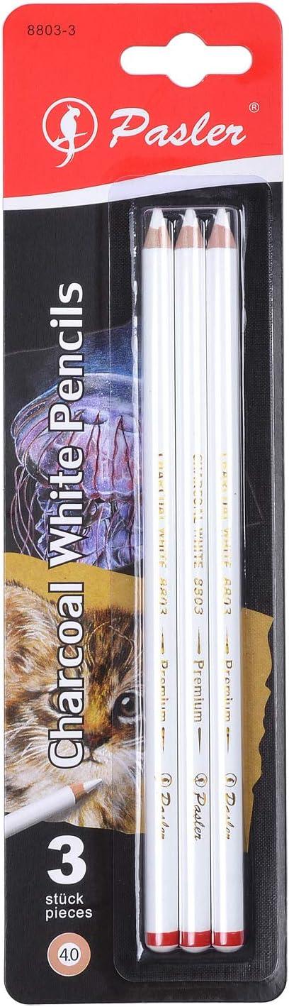 Pasler White Sketch Charcoal Pencils Perfection Sketch Highlight White Charcoal Pastel Pencils for Artist Drawing Sketching Blending (Set of 3)
