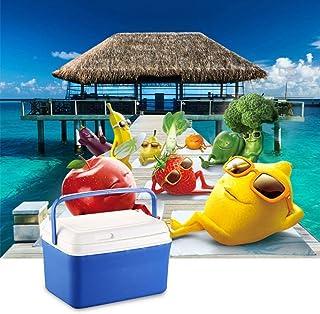 TG GTT 8L Voiture Mini réfrigérateur Home Cooler/Warmer Box–Portable réfrigérateur Famille Personnel congélateur 32*24*21cm