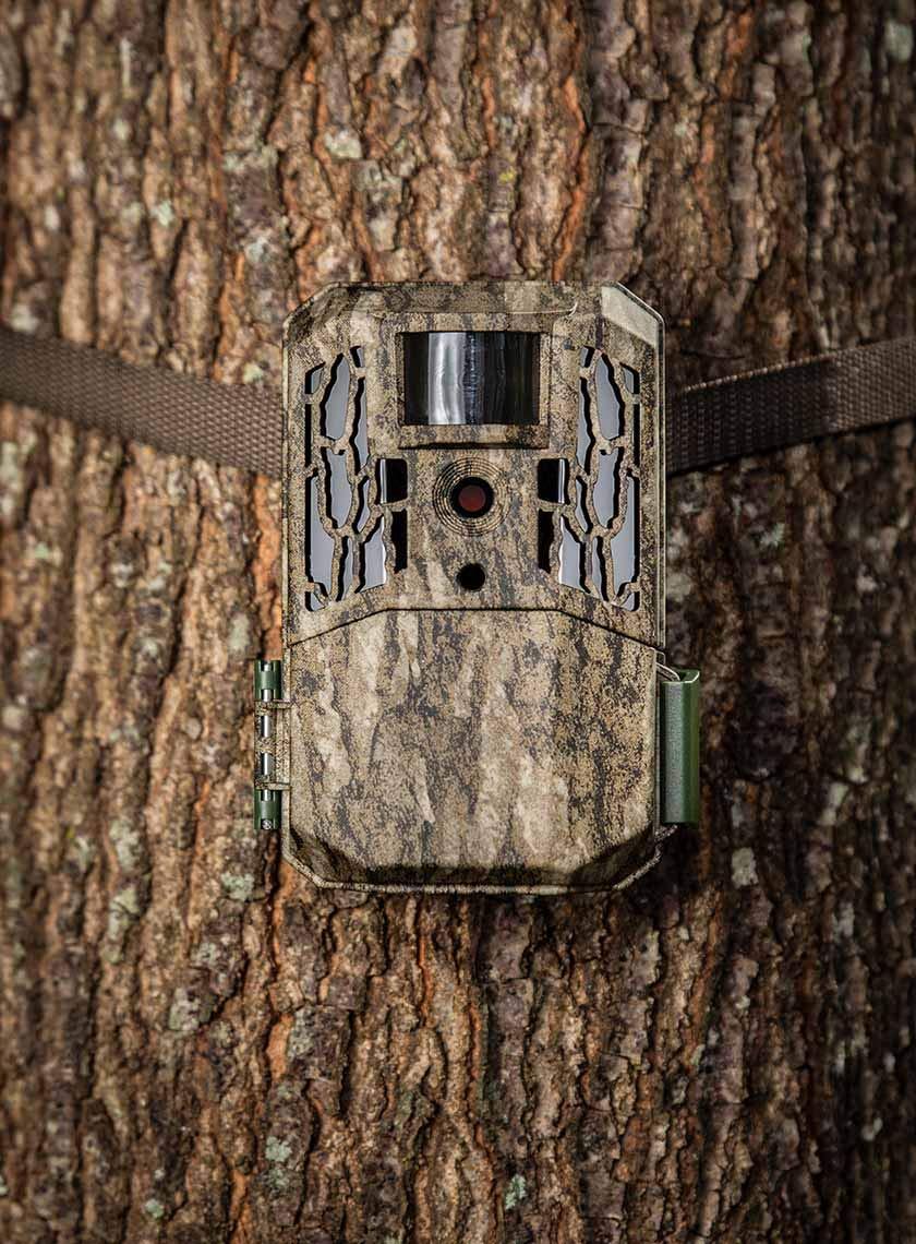 Primos AutoPilot No Glow Trail Camera + Camlockbox Security Box