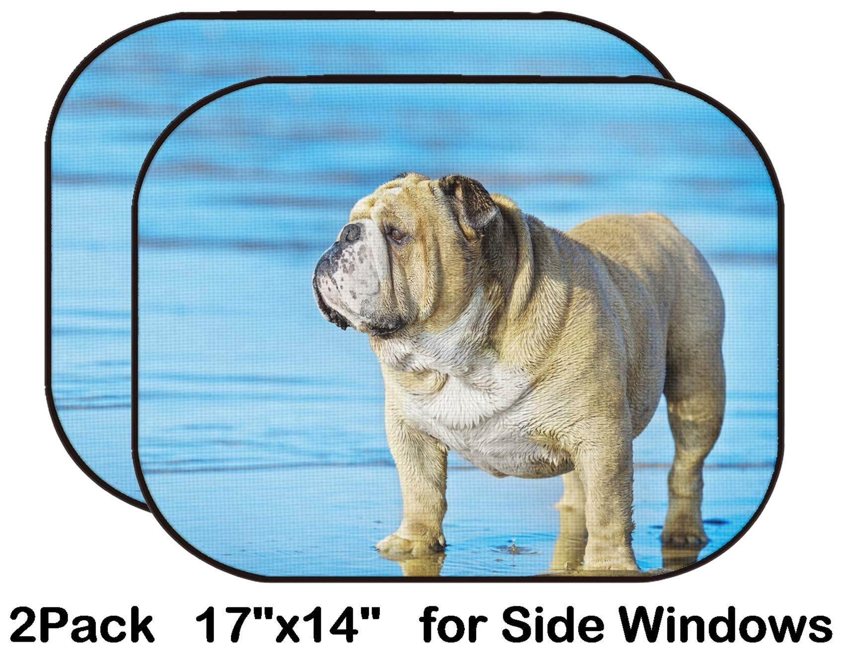 Liili Car Sun Shade for Side Rear Window Blocks UV Ray Sunlight Heat - Protect Baby and Pet - 2 Pack Funny Cute Dog English Bulldog Standing in The Water on his Mirror Reflection IMAG by Liili