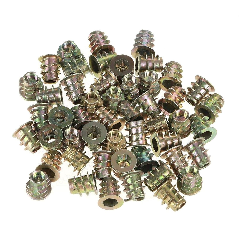 10 mm LAQI 50Pcs Tuercas Tipo Cabeza de accionamiento Hexagonal roscada Alambre de aleaci/ón de Zinc Muebles Tornillo Hexagonal para Kit de Surtido de Inserto de Madera M5