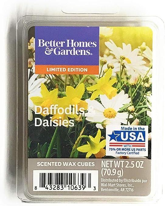 Better Homes /& Gardens 4 Boxes Apple Crisp Tea Scented Wax Cubes Melts