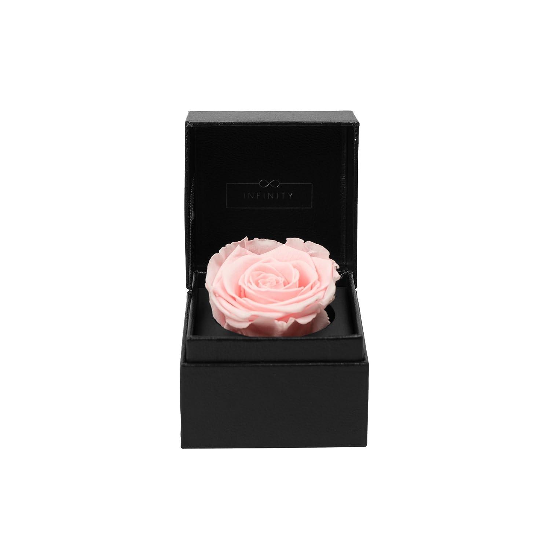 INFINITY Flower Box Single Box Bridal Pink articoli da regalo, cartone, Rosa, 10 x 10 x 10 cm 10x 10x 10cm Infinity Flowerbox 4-BB-BP