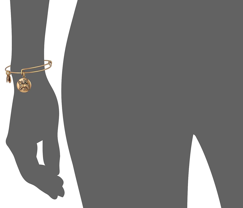 Alex Ani Zodiac Expandable Bracelet Image 3