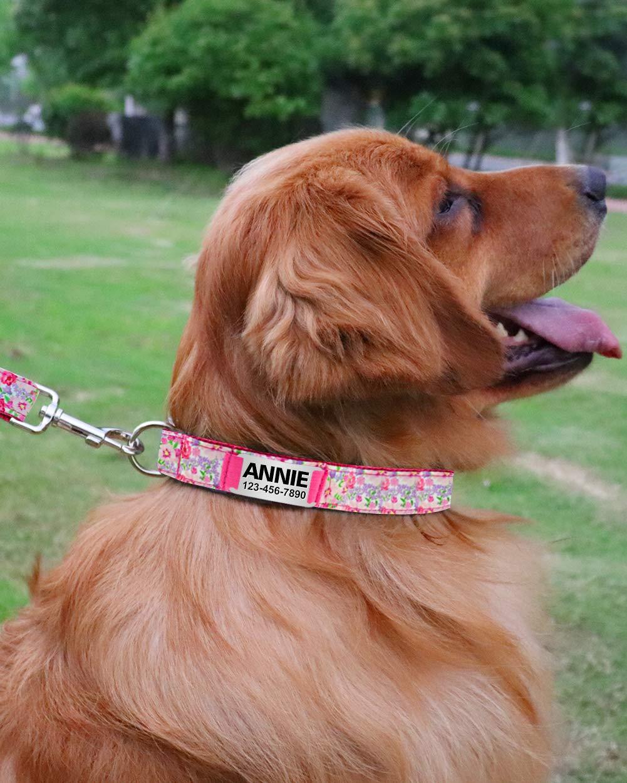 TagME Collare per Cani Personalizzato Morbido Collare per Cani con Motivo Elegante,Targhetta in Acciaio Inossidabile,Adatto a Cani di Taglia Grande,Rosa Brillante
