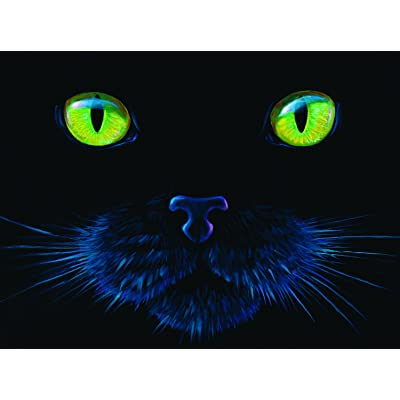 Black Cat 1000 pc Jigsaw Puzzle by SunsOut: Toys & Games