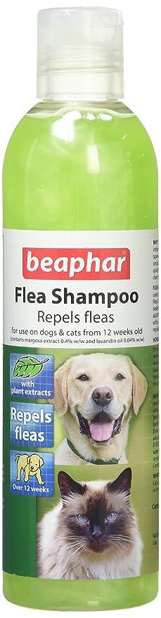 1 opinioni per Beaphar Flea Repellente Shampoo per pulci