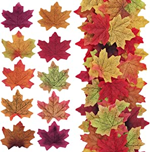 """Supla 500 Pcs 10 Colors Assorted Fake Silk Autumn Maple Leaves Bulk Artificial Fall Leaf Foliage 3.15"""" L X 3.15"""" W for Thanksgiving Table Door Fall Wedding Party Birthday Baby Shower Decorations"""