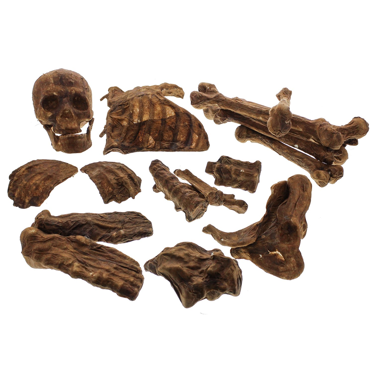 Halloween Haunters 20 Piece Bag of Plastic Life Size Burnt Rotten Flesh Mummy Skeleton Skull Bones Prop Decoration - Scary Graveyard Human Realistic Corpse Body Parts Set - Hands, Feet, Arms, Legs