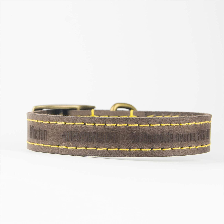 Opcional: Correa Marron Oscuro//Extra peque/ño Collar de Perro Personalizado