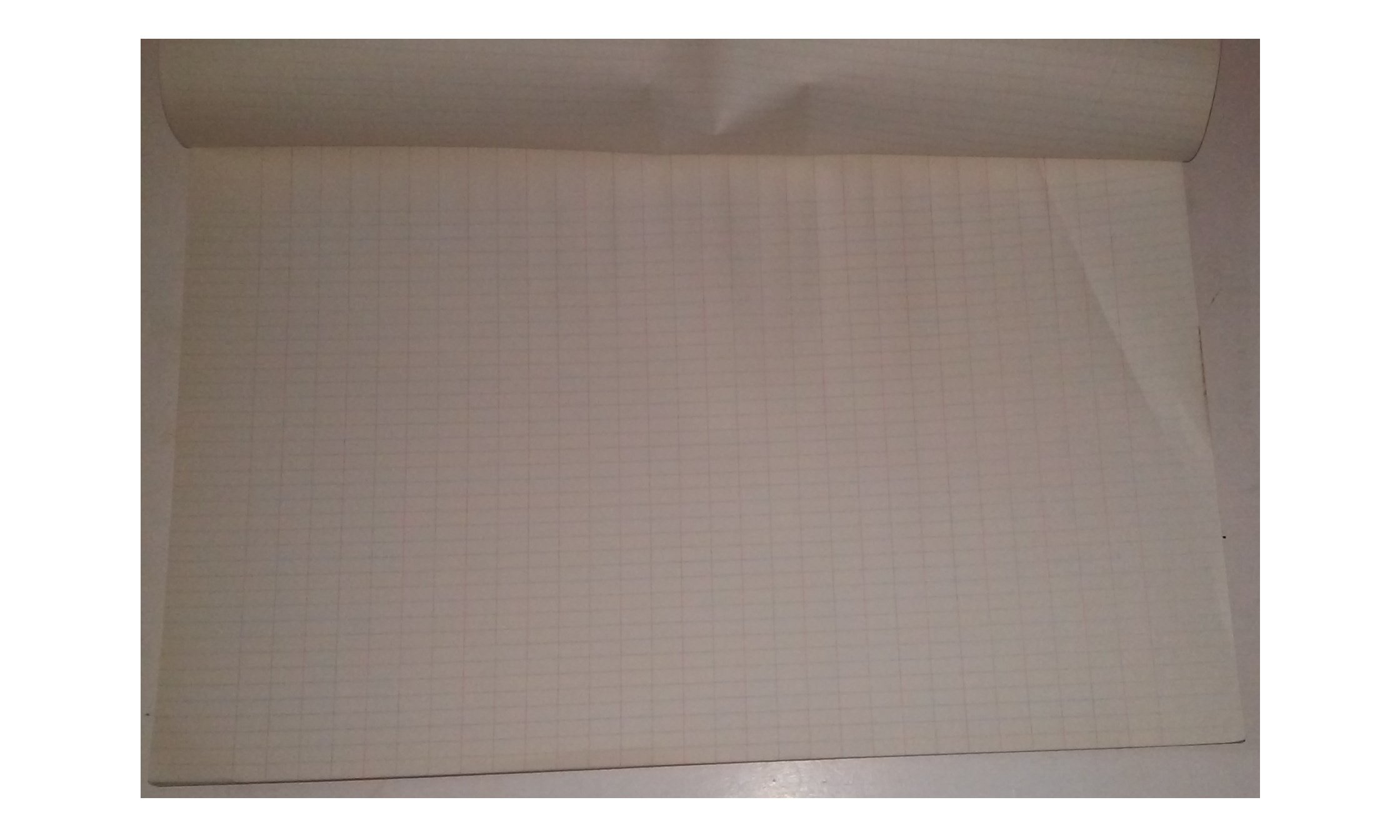 Ampad 1736 Efficency Line Columnar Pad 17'' x 11'' Ruled 50 Sheets 29 Columns With Name Space