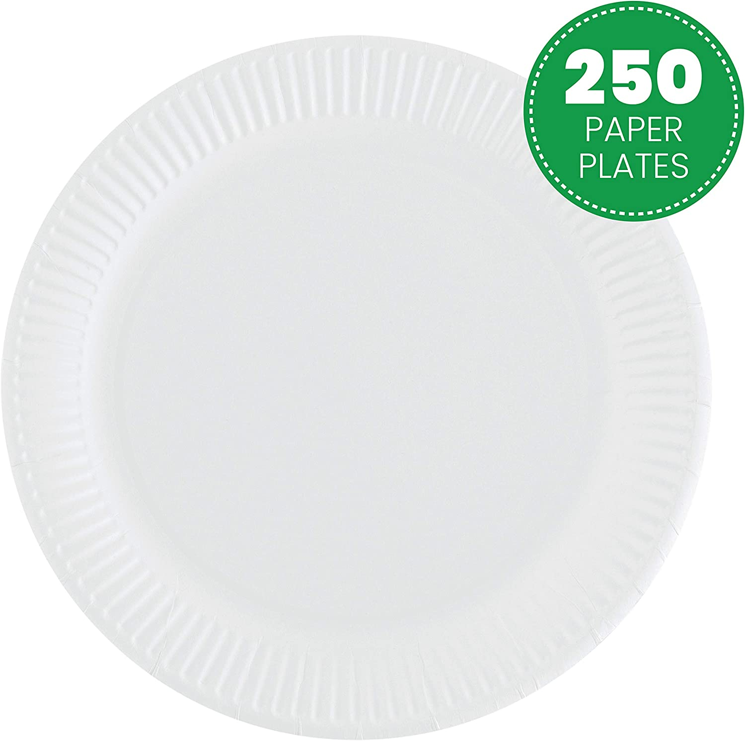 Plasticpro Disposable White Uncoated Paper Plates 9'' Inch Pack of 250