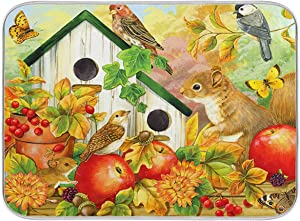 Mr.Brilliant Dish Drying Mat for Kitchen Counter Squirrel Bird Apple Dishes Mats Absorbent, Heat Resistant, Washable for Home Cleaning Decor Animal Fruit Autumn Vivid Oil Painting 18x24 in 2060624