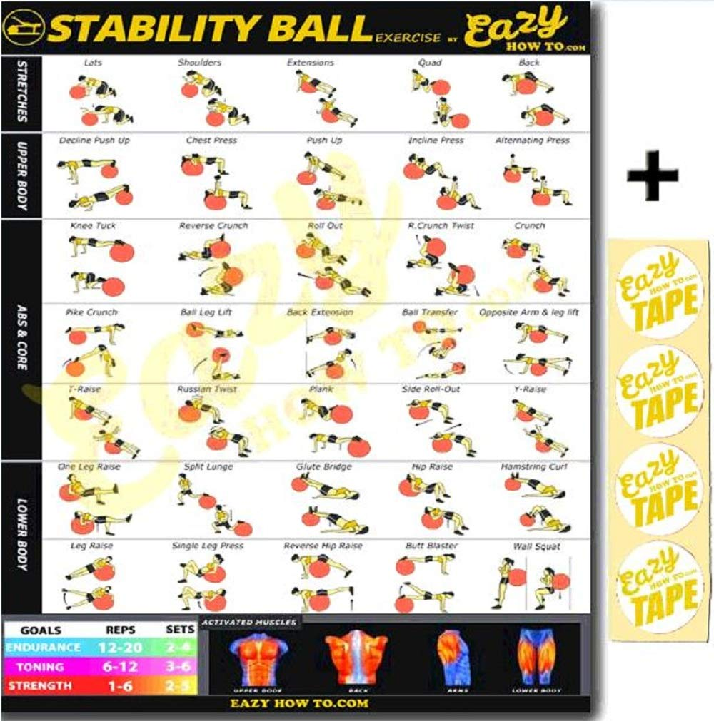 Eazy How To Stability Ball Exercise Workout Banner Poster BIG 28 X 20'' Train Endurance, Tone, Build Strength & Muscle Home Gym Chart