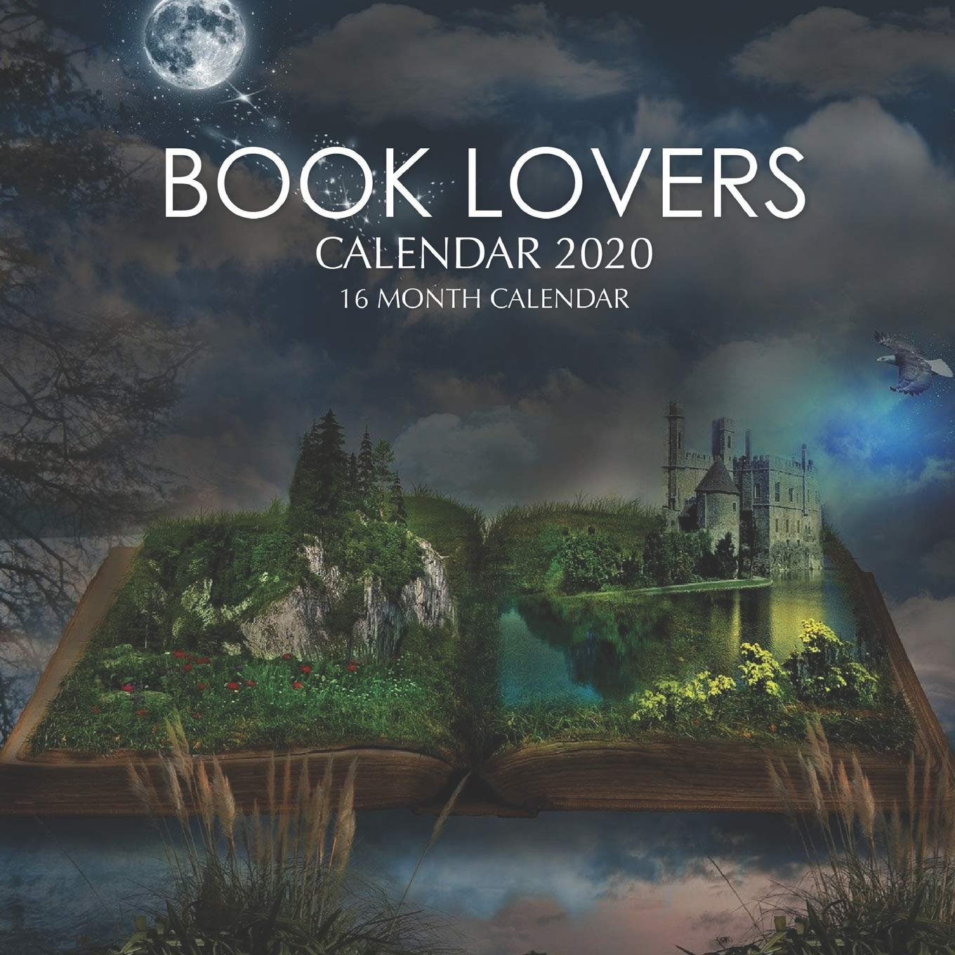 Pictures of Book Lovers Calendar 2021
