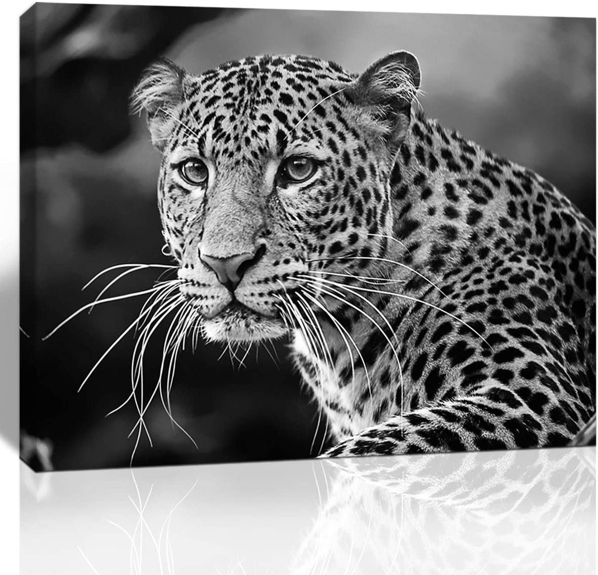 Purple Verbena Art Black White Leopard Animal Pictures Wall Art Beast Photo Canvas Print Painting Framed Artwork for Home Office Living Room Wall Creative Decoration 12x16 Inch