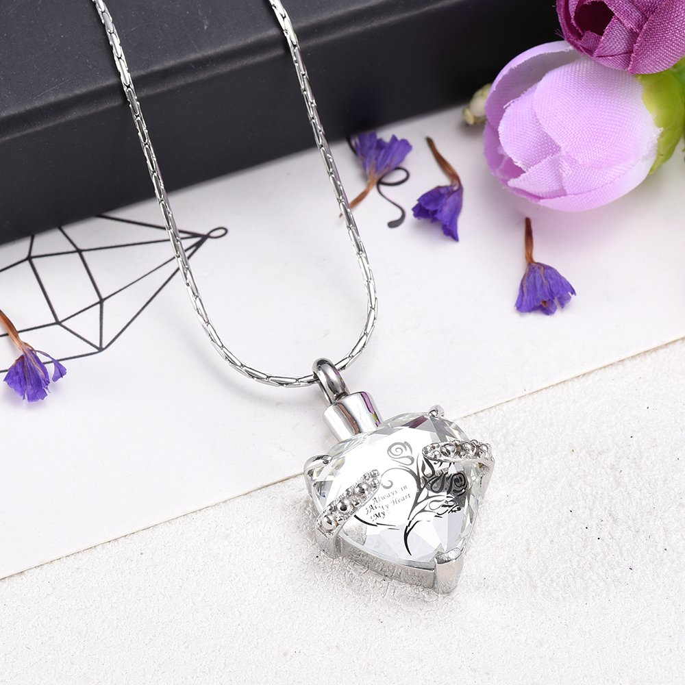 Always In My heart Crystal Necklace Stainless Steel Cremation Ashes Pendant Memorial Cremation Jewelry by constanlife (Image #2)
