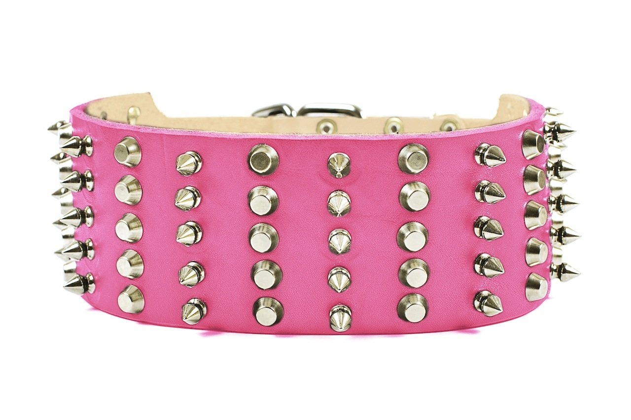 Dean & Tyler Leather Dog Collar  WIDE HEAVEN  Size 20 Inch By 2 3 4 Inch Width Pink. Will Fit Neck Size 18 Inches to 22 Inches.