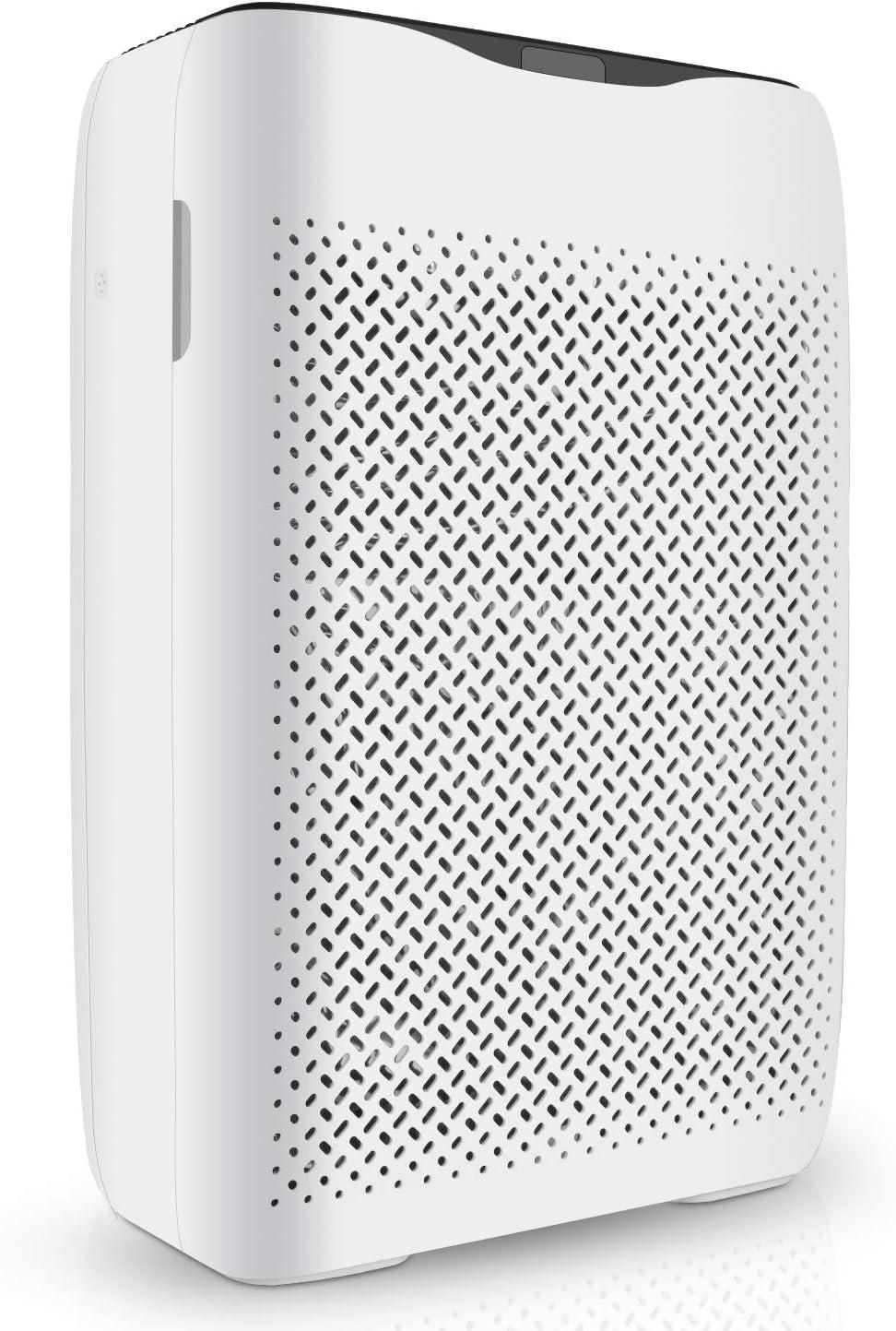 COOCHEER Purificador de aire con filtro HEPA y filtro de aire de ...