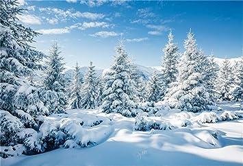 Risultati immagini per snowy landscape