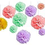 ZeWoo Set di 15 Pompon in Carta Velina per Decorazione di Festa Fiori di Carta