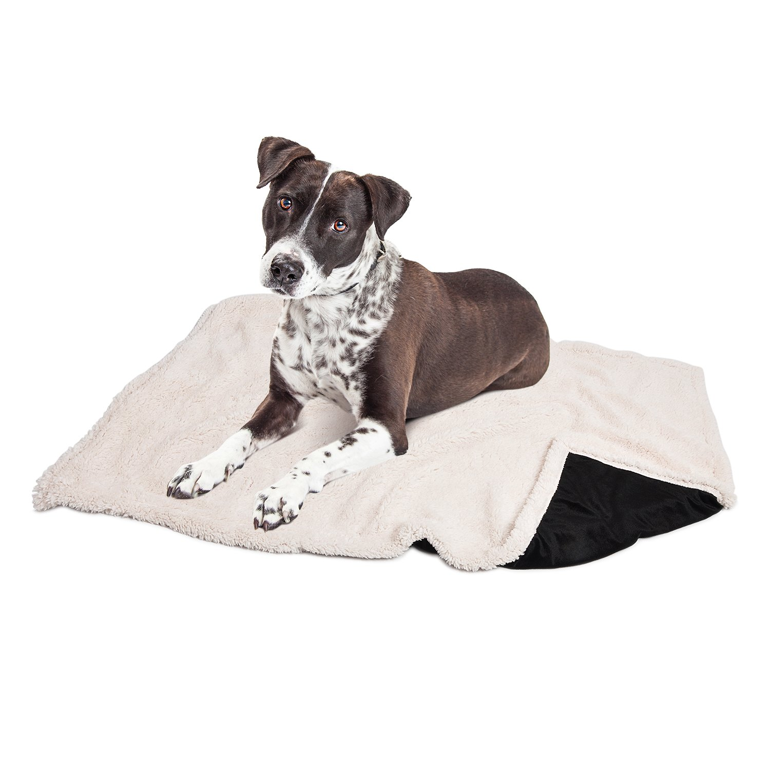 Puppy Blanket,Super Soft Sherpa Dog Blankets and Throws Cat Fleece Sleeping Mat for Pet Small Animals 45x30 Black by Pawsse (Image #4)
