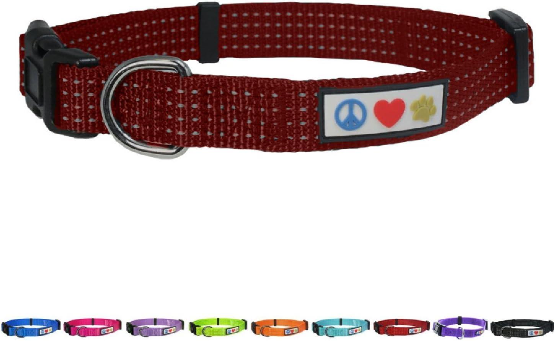 Pawtitas Collar Reflectante Collar de Perrito Collar de Mascota Collar de Entrenamiento Mediano Collar de Perro Turquesa Collar de Perro