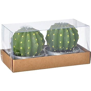 2 X Ronds Modèle D6 Aluminium Grand Bougies Longue H7 201 Set Chaise De 36 Et Cactus Cire 1h La Cm Verts zVSqMUp