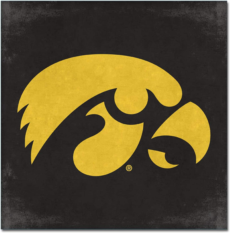 One Size NCAA Legacy Iowa Hawkeyes Mini Canvas Art 9x9 Custom