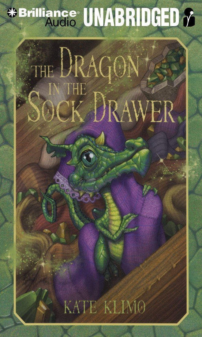 The Dragon in the Sock Drawer (Dragon Keepers Series) ebook