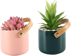 Artificial Succulents, Set of 2– Real Touch Plastic Fake Plants in Beautiful Ceramic Pots with Stand– Stylish Modern Farmhouse Decor Perfect for Decorating Home
