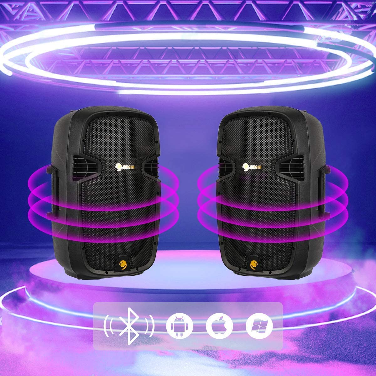 Portable DJ Speaker with Active Bluetooth FM Radio Cchainway 12 Inch 2000 Watts Dual 2-Way Powered PA Speaker System 2 Speaker Stands Passive Speakers Microphone Remote Control USB//SD Card