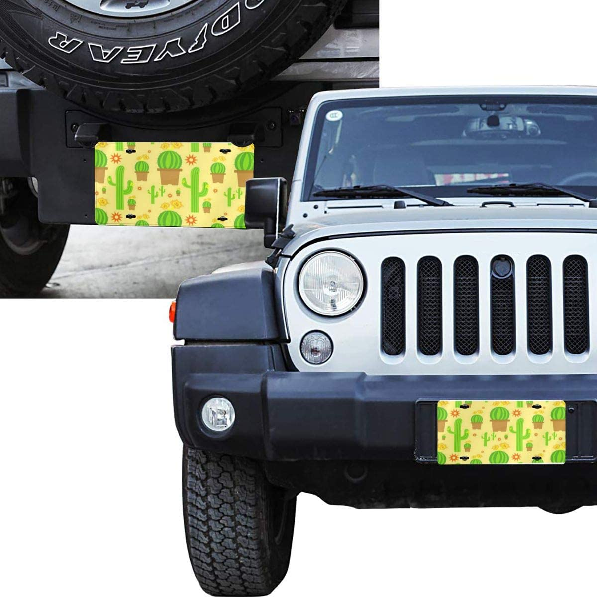 License Plates Colorful Paisley Waterproof Metal Auto Tag Signs for Car Decoration 6 X 12 Inches
