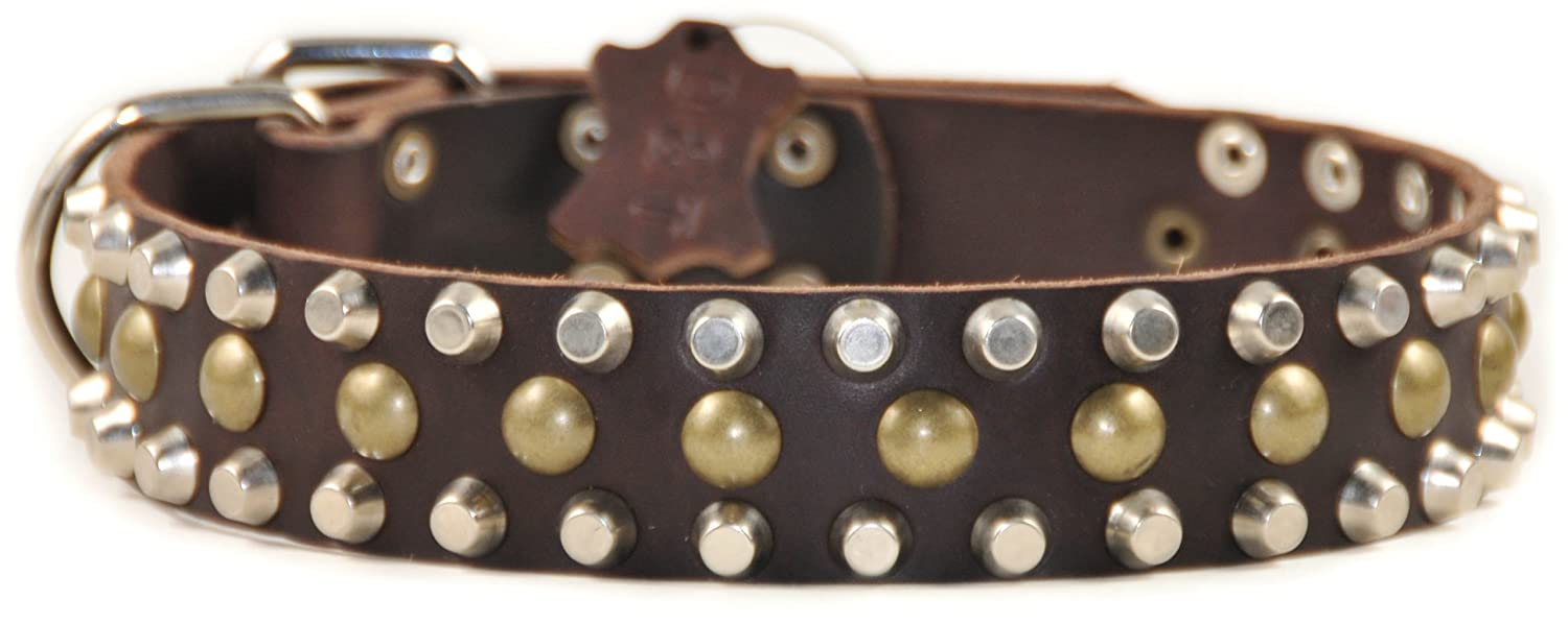 Dean and Tyler STUDLY , Leather Dog Collar with Pyramids and Studs Brown Size 30-Inch by 1-1 2-Inch Fits Neck 28-Inch to 32-Inch