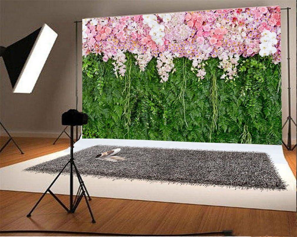 YongFoto 1,5x1m Vinyle Toile de Fond Piano Blanc Int/érieur Fleurs Rose des Arbres Rideau Blanc Archiculture europ/éenne Fond D/écors Studio Photo Portrait Enfant Video Fete Photographie Accesorios