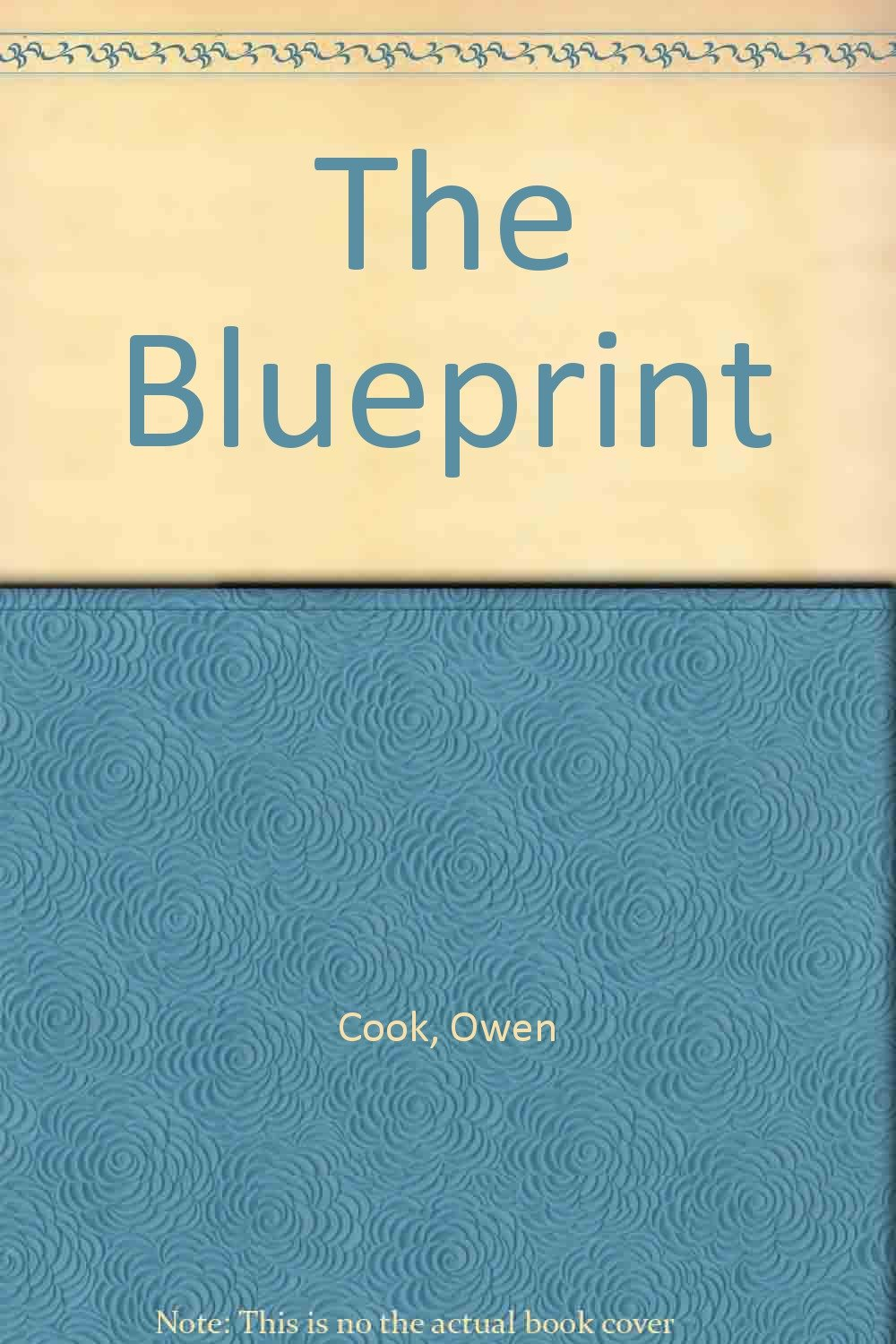 The blueprint owen cook 9781846050961 amazon books malvernweather Gallery