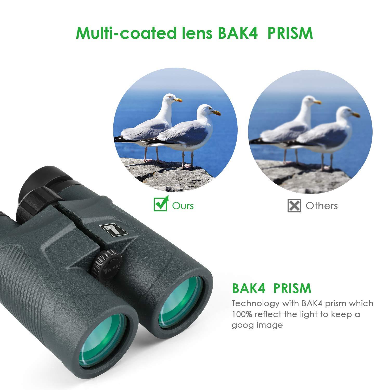 TELMU 10 x 42 Prism/áticos con Prisma Superior BAK4 y Lente FMC Binoculares Compactos para Conciertos Partidos de F/útbol Correas para Los Hombros y Bolsas Observaci/ón de Aves