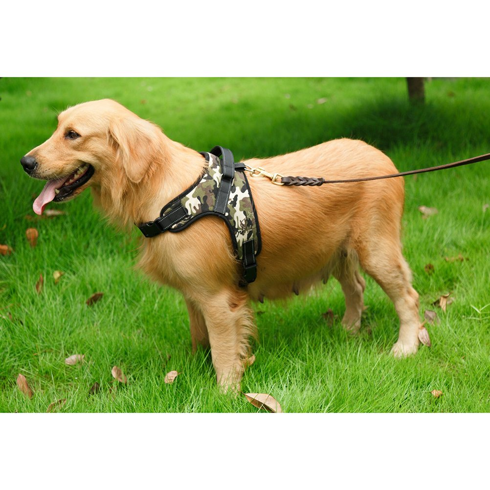 71lO1Ow66sL._SL1002_ amazon com winomo saddle style oxford cloth dog harness with d