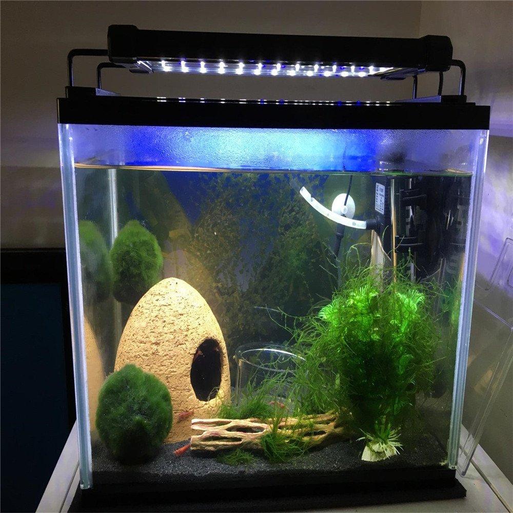 Cotek Lampara LED Azul y Blanca Colgante Acuario 30-48 cm: Amazon.es: Productos para mascotas