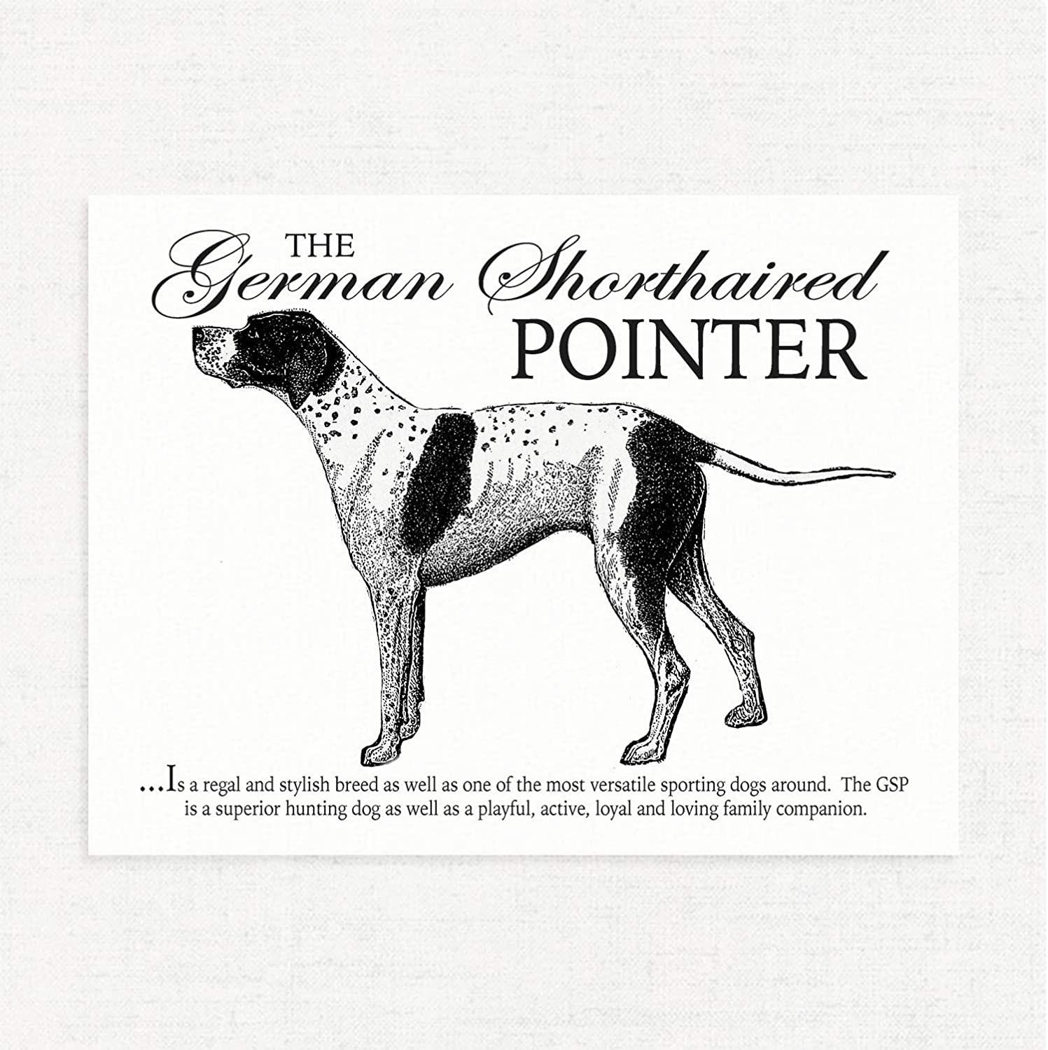German Shorthaired Pointer Original Print 8x10 Matted to 11x14